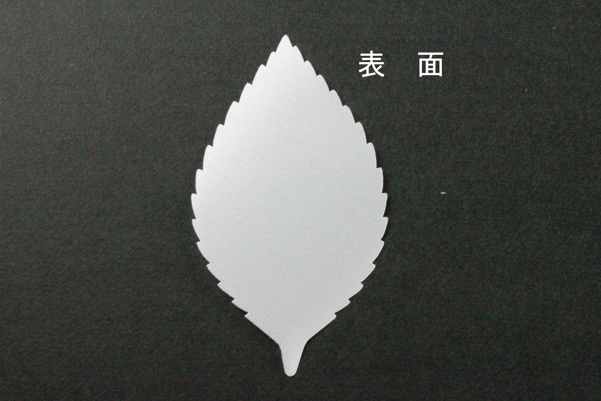 FC1089TS