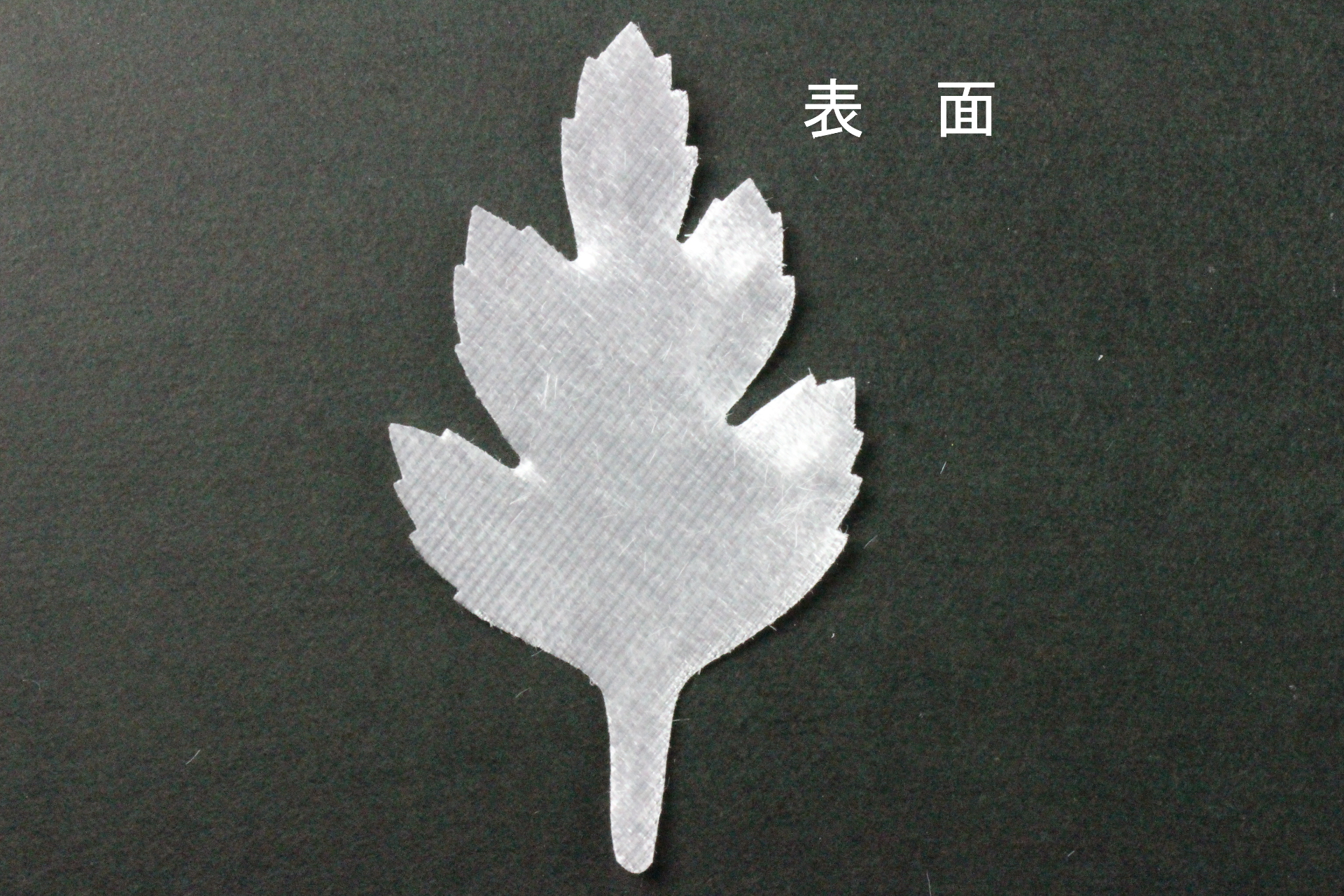 FC1010S