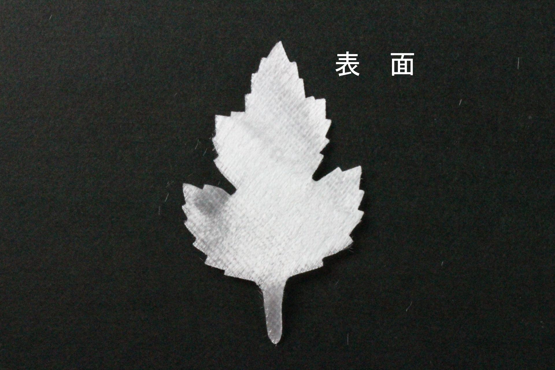 FC1011S