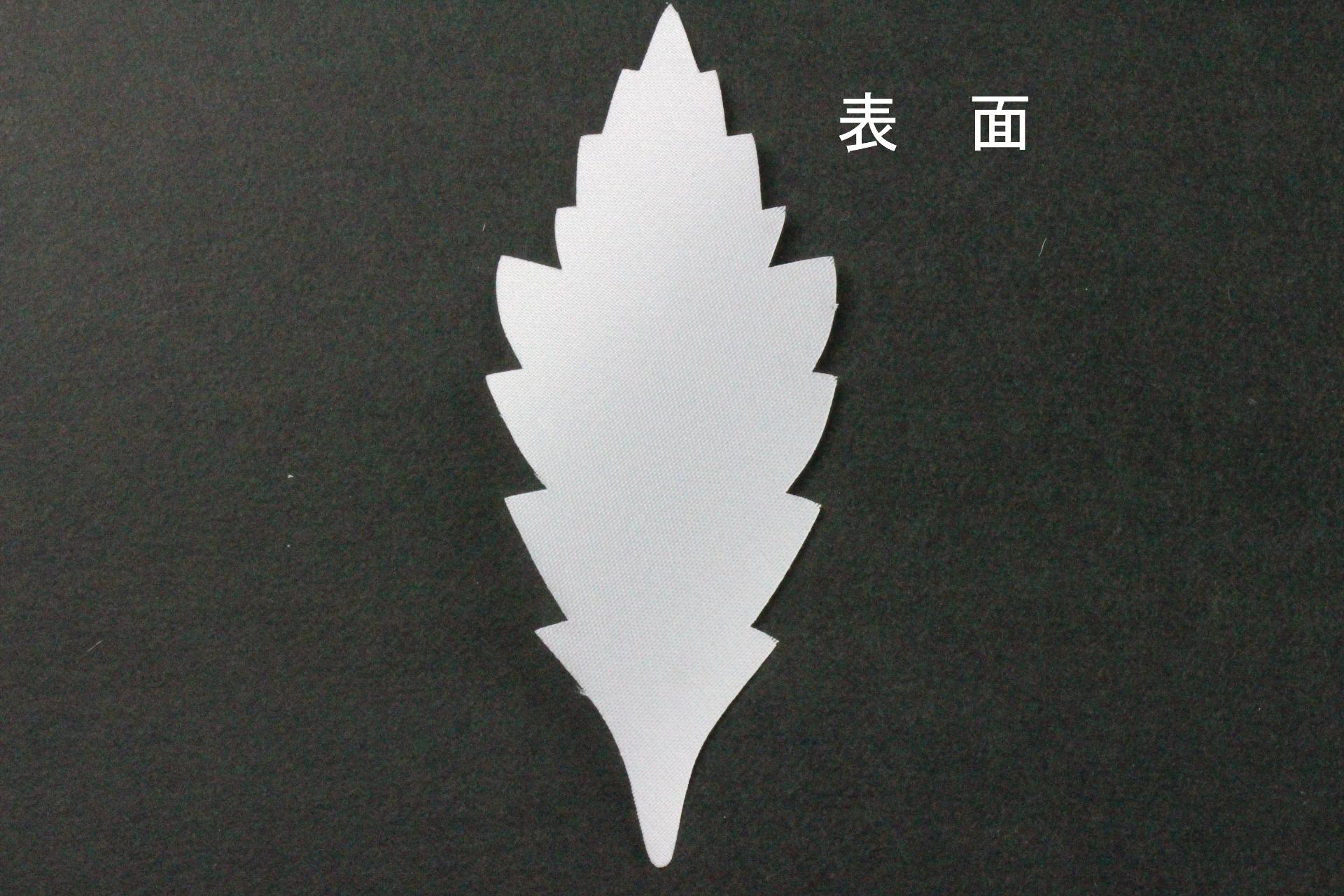 FC1007TS