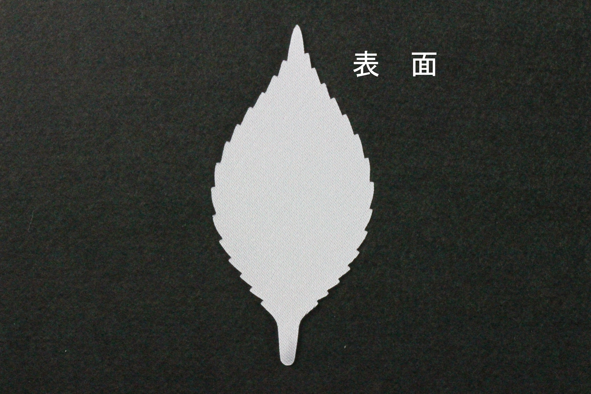FC1086TS