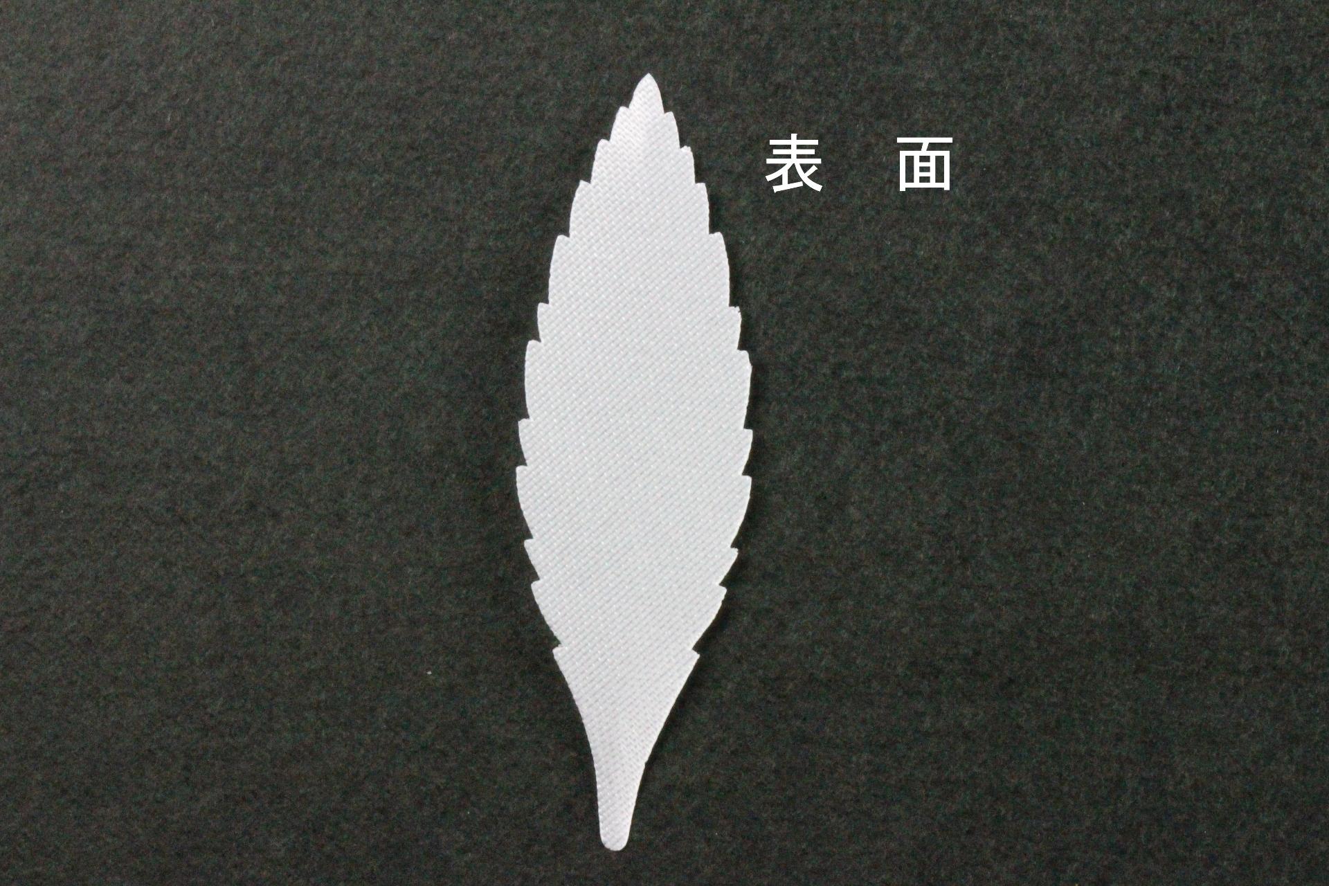 FC1106TS